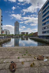 Docklands May 2016 (30 of 31) (johnlinford) Tags: london canon poplar docklands canarywharf canonefs1022 canoneos7d