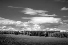 _DSC0605 Oak Grove, Minnesota USA (POV Heartland) Tags: sky bw field clouds landscape sony country farming e fe oakgrove carlzeiss a7ii loxia anokacounty sonyalpha xeiss a7m2 loxia250 loxiaf250mm loxiaf250