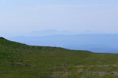 sguardo a sud (Tabboz) Tags: panorama primavera erba montagna strade cima prati vetta pascoli prealpi fioriture