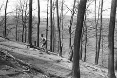 Running to the peak (The_BigBadWolf) Tags: wood people blackandwhite film nature monochrome sport analog forest analogue