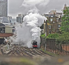 Flying Start (Deepgreen2009) Tags: london train tour pacific famous railway victoria surrey steam hills special a3 locomotive departure emerging iconic exhaust flyingscotsman uksteam