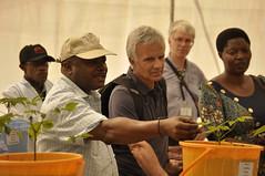 DG Sanginga and board members in Bukavu (IITA Image Library) Tags: boardmeeting cassava bukavu iita cbsd dsc0598 manihotesculenta botmembers