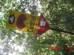 "Pengembaraan Sakuntala ank 26 Merbabu & Merapi 2014 • <a style=""font-size:0.8em;"" href=""http://www.flickr.com/photos/24767572@N00/27094730481/"" target=""_blank"">View on Flickr</a>"