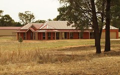 319 Pine Hill Road, Narrandera NSW