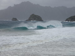 Waves at Sealers Bay (dracophylla) Tags: newzealand codfishisland whenauhoa
