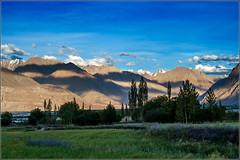 An evening in Nubra Valley (NomadicNav) Tags: ladakh nubravalley canonefs1855mmf3556 canon400d