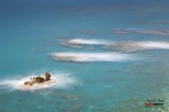 Turtle Rock (Jose M. Peral) Tags: sea espaa paisajes costa naturaleza blanco horizontal azul mar punto andaluca agua europa mediterraneo exterior verano es formas seda fondo almera marino rocas salado espuma mojcar turquesa largaexposicin alairelibre