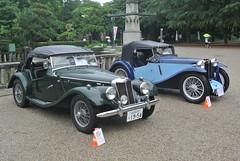 BCCM16049 (tanayan) Tags: park classic car nikon automobile meeting mg nagoya british midget j1  tf   tsuruma