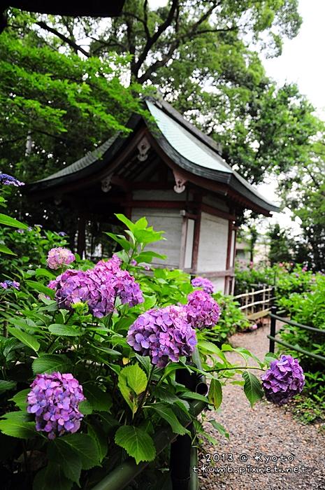 2013藤森神社12.jpg