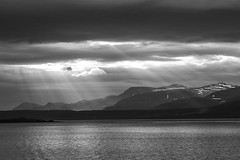 Hvalfjrur (gunnarmh) Tags: light sea sky blackandwhite bw sun plant man black nature water landscape photography iceland aluminum power photos sunny lightning