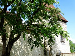 DSC05593 (Mr.J.Martin) Tags: germany austria burghausen castle burgfest salzach bavaria gapp exchange