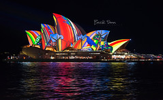 Vivid Sydney 2016 (Beck Dunn Photography) Tags: colour reflection water architecture lights nightscape harbour sydney vivid australia citylights nsw newsouthwales aboriginal operahouse sydneyharbour sydneyoperahouse sydneyharbourbridge sydneycity aboriginaltheme vividsydney vividfestival vivid2016