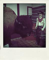 buffalo and cowboy (Leo Reynolds) Tags: xleol30x poladroid polaroid faux fauxpolaroid fake fakepolaroid phoney phoneypolaroid route66 xxx2016xxx