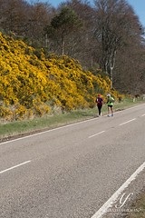"JOGLE day 2-44 <a style=""margin-left:10px; font-size:0.8em;"" href=""http://www.flickr.com/photos/115471567@N03/16936667830/"" target=""_blank"">@flickr</a>"