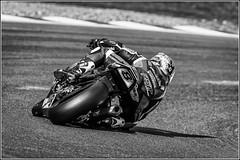 #8    Shaun WINFIELD    Kawasaki (Smudge 9000) Tags: bw sport bikes racing motorcycle bsb brandshatch superbikes 2015