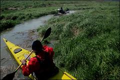 BdS_2182 (SAS Photographie) Tags: sun france sport canon boat kayak paddle gimp northsea kayaking leisure paddling channel watersport baiedesomme d10 biskaya lettmann rckl