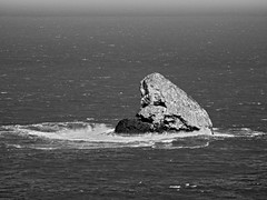 Meares Rock - BW