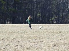 2015.04.12-17.18.21 (Pak T) Tags: dog field kat pug zuiko bennett westford omzuiko100mmf28