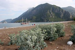 The bay of Cirali, Turkey (Pterodactylus69) Tags: praia beach strand turkey bay playa trkei lycia bucht cirali lykien