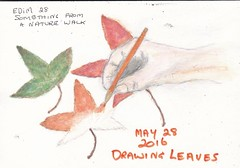 28 May 2016 - Drawing leaves (art observer) Tags: leaves