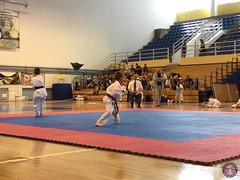 stefanou_15_5_2016_knockdown_66