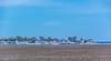 _DSC0522 (johnjmurphyiii) Tags: statepark usa beach spring connecticut madison longislandsound polarization hammonasset polarizedfilter 06443 tamron18270 johnjmurphyiii originalnef