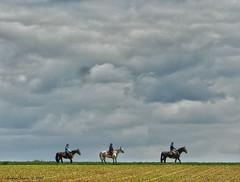 Onderweg - On the way (Marian Smeets) Tags: horses people horse clouds landscape wolken lucht limburg landschap paard paarden mensen 2016 limburgslandschap sweikhuizen nikoncoolpixs9100 mariansmeets