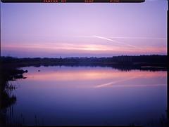 Bytom, Poland. (wojszyca) Tags: urban lake reflection skyline landscape twilight dusk wanderlust cameras epson 4x5 90mm 90 largeformat 9x12 gossen schneiderkreuznach 4990 bytom angulon uppersilesia lunaprosbc travelwide