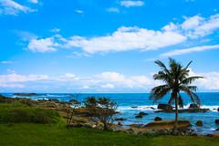 (Jack_Wei) Tags: sea tree view taiwan