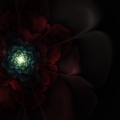 julian (sil737) Tags: light abstract flower art nature geometry flames flame galaxy fractal apophysis complexity fractals dimension algorithm algorithmic mathematic fractalgeometry apophysis7x