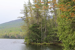 Chittenden, Vermont - 5/24/16 (myvreni) Tags: nature landscape outdoors spring pond vermont