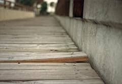 Boardwalk (Kiev 2A, 1957) (PositiveAboutNegatives) Tags: park film analog zeiss 50mm florida kodak bokeh grain rangefinder walkway boardwalk coolscan sonnar jupiter8 gold200 contaxii kiev2a nikon9000scanner johnprincememorialpark