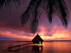 An overwater palapa provides an idyllic spot to watch a sunrise in Belize | Photography by Mark Lewis (manbeachrm) Tags: blue sunset pordosol orange cloud sun silhouette skyline clouds sunrise landscapes sundown horizon natur sunsets puestadesol naturelovers naturelover   sunsetporn skyporn skylovers natureperfection sunsetstream landscapelovers instasky landscapecaptures trbsunsetsfx piclogy