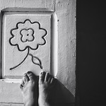 The Perks Of Being A Door #Flower thumbnail