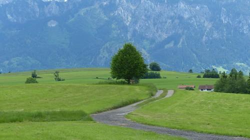 Rundtour Hopfensee und Forggensee