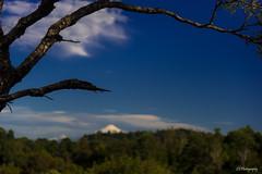 Blurring days for the sun (.KiLTRo.) Tags: freire ixregin chile kiltro villarrica volcano andes landscape outdoor tree sky simplysuperb