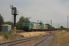 BB 27093 + BB 27081 / Dunkerque (jObiwannn) Tags: train fret ferroviaire locomotive prima