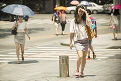 lifeinthehigh30s 5 (matteroffact) Tags: shanghai china asia heat heatwave celcius fahrenheit hot temperature summer umbrella hell hades street puxi jing an jingan district humid nikon d800 d800e andrew rochfort andrewrochfort matteroffact shade sweat