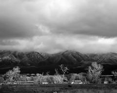 Gray Taos 08
