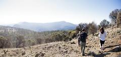 Mount Direction