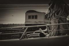 Lecture (peterfatson) Tags: blackandwhite mer port silver boat noiretblanc pentax grain nik bateau wr k3 1685 efex