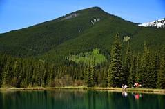Relaxation (GWP_Photo) Tags: mountain canada colour kananaskis pond nikon alberta d750 nikkor 24120