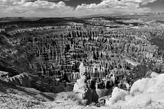 Natural Rock Stadium (JasonCameron) Tags: park sky white mountain black texture monochrome rock clouds mono utah canyon carve national bryce years