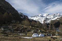 Preparazione tende per  la notte (Ciak88) Tags: italy panorama mountain snow alps verde nature amazing nikon italia natura neve alpi montagna devero alpedevero d5300