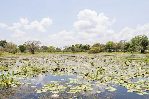 anuradhapura - sri lanka 48