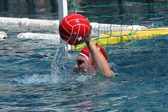 3Z8365_R.Varadi_R.Varadi (Robi33) Tags: summer men sports water swimming ball fight action basel swimmingpool watersports waterpolo sportspool waterpolochampionship