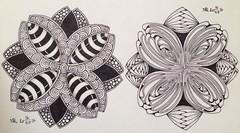 20160516_Zendala_Same_String (terem13) Tags: patterns string tangles zentangle zendala
