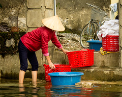 Laundry Day (dltaylorjr) Tags: river asia labor vietnam laundry hanoi tamcoc