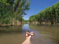 Chacos in the Verde River (EllenJo) Tags: pentax cottonwoodarizona 2016 june19 jailtrail 86326 ellenjo ellenjoroberts pentaxqs1