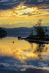 """Golden hour "" (Vest der ute) Tags: sunset sea seascape norway reflections landscape rogaland swane fav25 fav200 g7x ryksund"